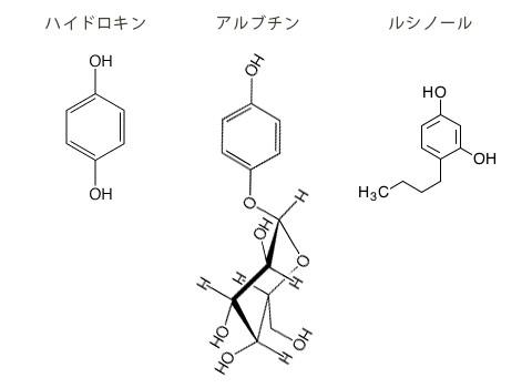 ハイドロキノンを品種改良したのがアルブチン